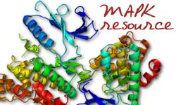 MAPK Resource